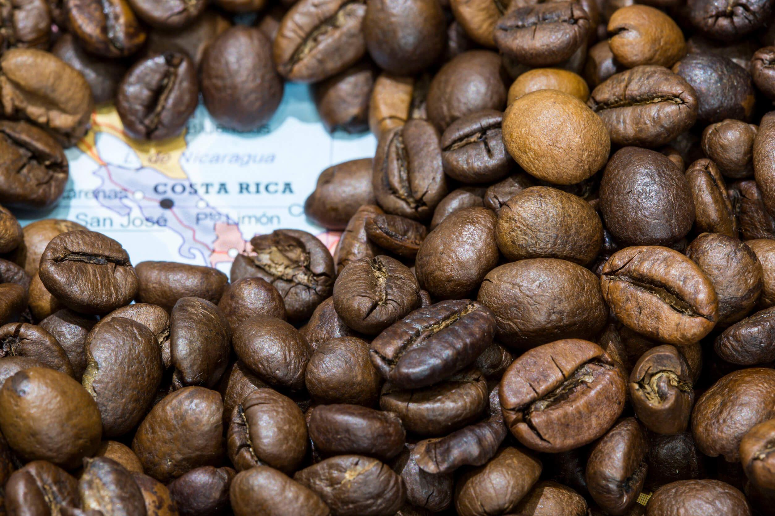 kaffee aus costa rica header